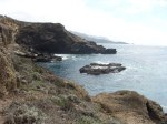 More gorgeous views in PointLobos