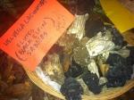 Helvella Lacunndea (Fluted Black Elfin Saddles